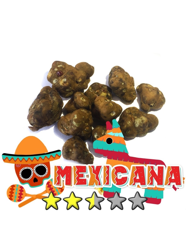 Budget Truffels | Psilocybe Mexicana € 0.00 Magische Truffels