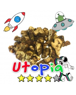 Magic Truffels | Psilocybe Utopia
