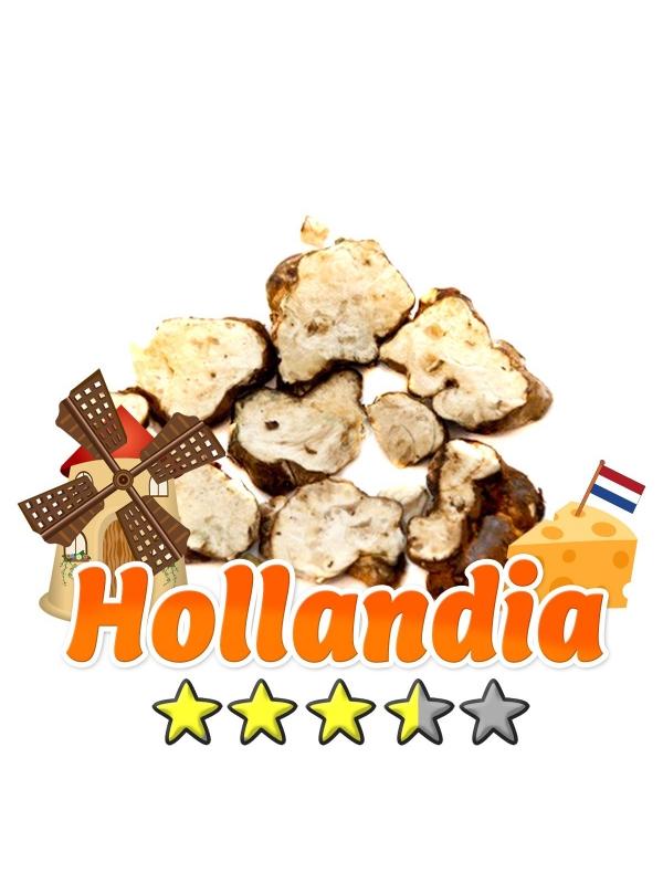 Budget Truffels | Psilocybe Hollandia € 12.95 Magische Truffels