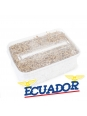 Cubensis Ecuador - Magic Mushroom Grow Kit 27,50   Magic Mushroom Growkits