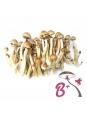 Cubensis B+ - Magic Mushroom Grow Kit 27,95  € Magic Mushroom Growkits